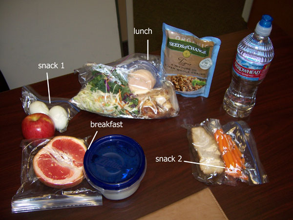 Chelle's clean & healthy cooler food Jan. 24, 2011