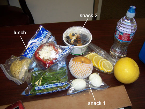 Chelle's clean eating cooler for Feb 1, 2011