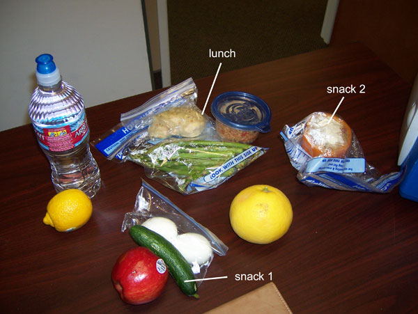 Chelle's clean eating cooler contents, February 3, 2011