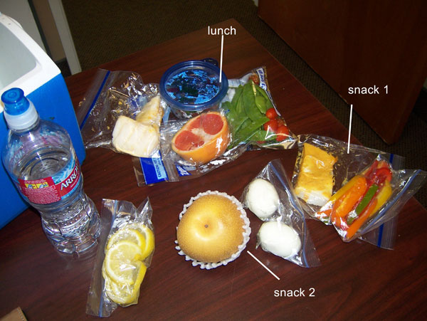 Chelle's clean eating cooler for Monday, Feb 28, 2011 - 1400 calories
